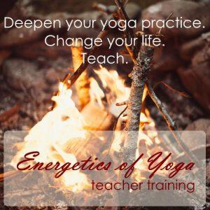 Energetics of Yoga Teacher Training at True North Yoga